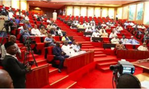 2020 Budget: Senate queries N600m allocation to power distribution companies
