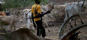 Herdsmen ambush, kill six hunters in Adamawa