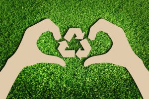 Why You Should Probably Go Green With Your Business
