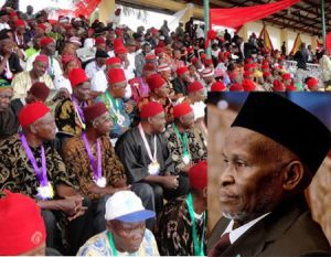 Sharia Law: Nigeria needs restructuring not constitution amendment, Ohanaeze replies CJN
