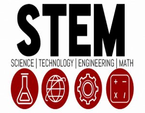 Stakeholders seek more female scientists to promote STEM