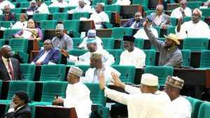 Reps tells Egypt, Kenya to ask their candidates for DG, WTO to step down for Okonjo Iweala