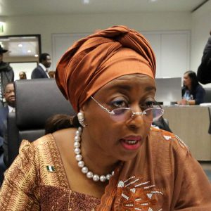 'Yahoo' boys have become role models, Diezani cries out