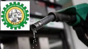 Nigerian govt spent N8.9trillion on subsidy – PPPRA
