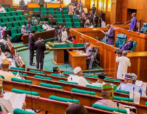 Reps seek upgrade of Aminu Kano Int'l Airport to world-class standard