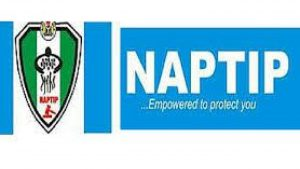 Trafficking: NAPTIP rescues 292 Ebonyi females, males from sexual exploitations, child abuse