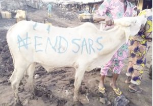 #EndSARS: Nine shot in Ondo