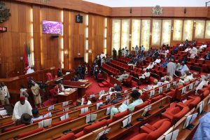 Senate rejects budget proposal as agency sites 20 projects in minister's LGA