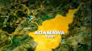 Youths break into warehouse in Adamawa, cart away rice, others