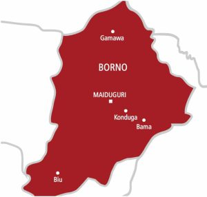 Six political parties to participate in Borno LG elections