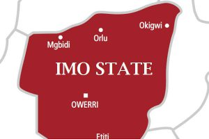 Disqualification of Frank Ibezim from Imo North Senatorial Bye-Election: APC has no candidate