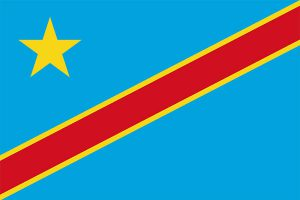 DRC's future depends on that of Africa, says MONUSCO