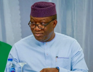 Fayemi's aide advocates change in education curricula for rapid development