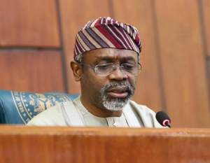 Constitution review: Gbajabiamila seeks level playground for women, men