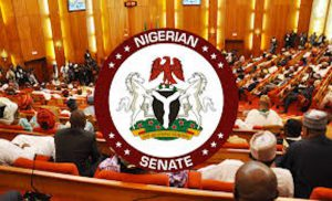 Senate condemns attack on Ebonyi community, charges Acting IGP to commence investigation