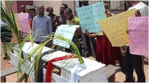 Slash in salary: ISOPADEC staff protest in Imo, bear casket to mock Governor Uzodinma