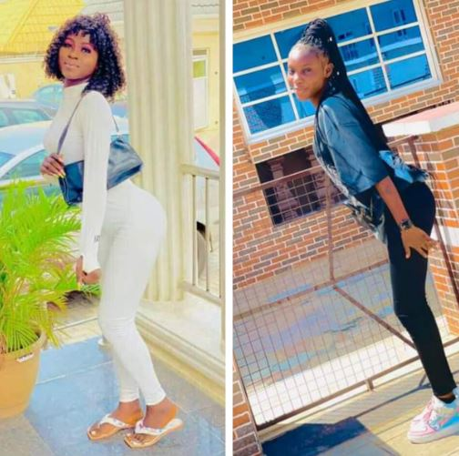 Young Nigerian Woman And Bestfriend Killed in Fatal Motor Accident, Boyfriend In Coma (Photos)