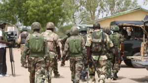 Nigerian Army dismisses video of soldiers destroying farmland, says it is doctored
