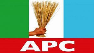 APC Chairmanship: North Central Yet To Agree On Consensus Candidate